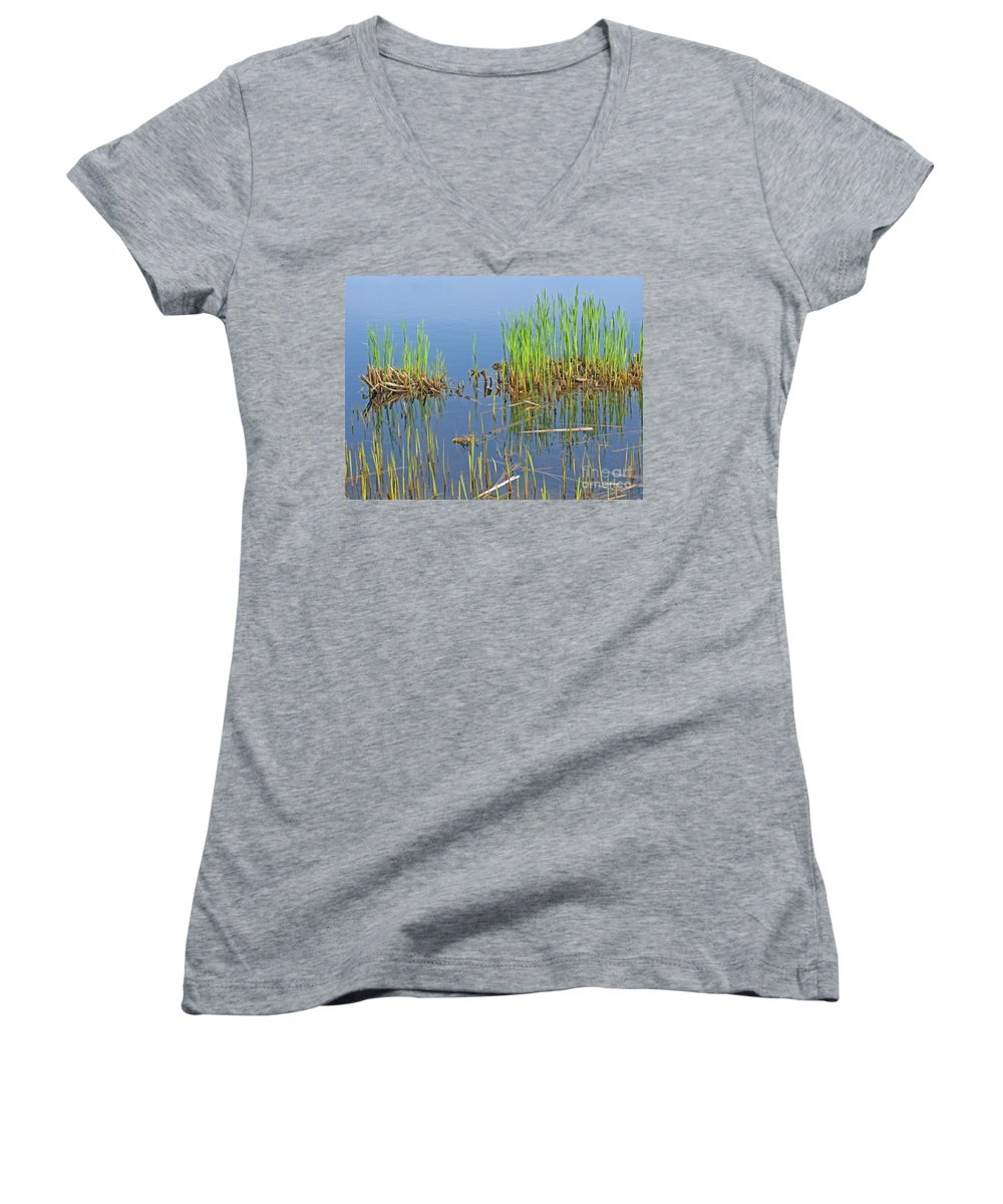 Spring Women's V-Neck T-Shirt featuring the photograph A Greening Marshland by Ann Horn