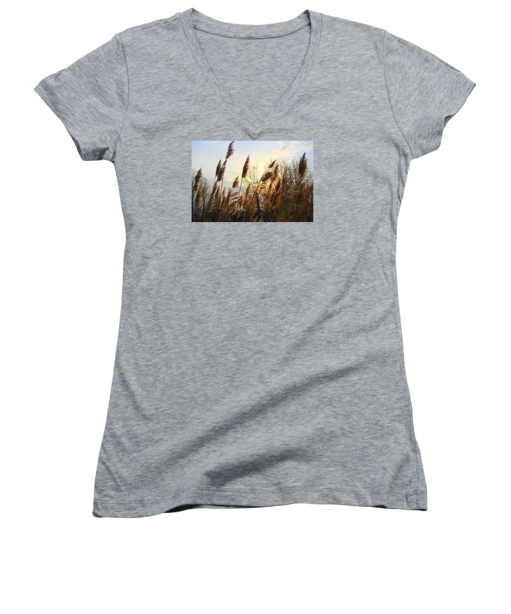 Pampasgrass Women's V-Neck (Athletic Fit) featuring the photograph Amber Waves Of Pampas Grass by J R Seymour