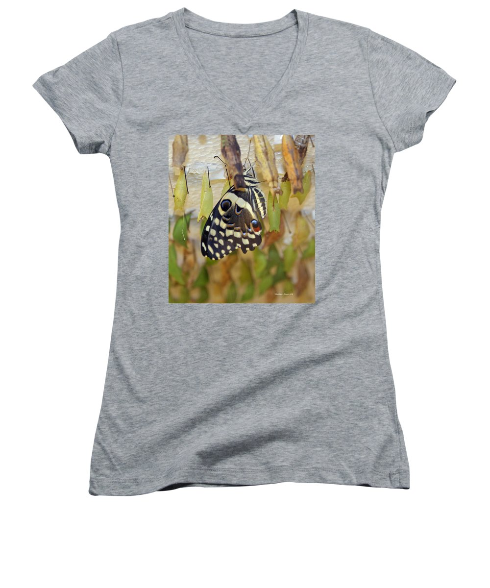 Butterfly Women's V-Neck (Athletic Fit) featuring the photograph And Life Begins by Shelley Jones
