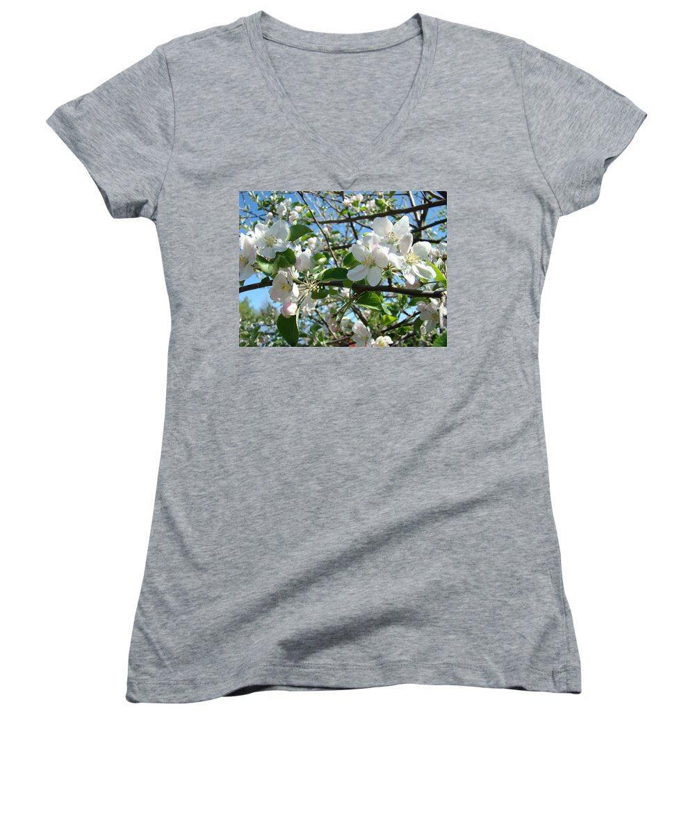 �blossoms Artwork� Women's V-Neck T-Shirt featuring the photograph Apple Blossoms Art Prints 60 Spring Apple Tree Blossoms Blue Sky Landscape by Baslee Troutman