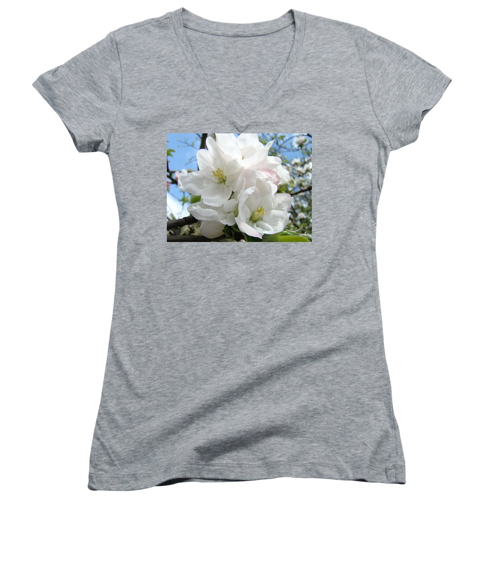 �blossoms Artwork� Women's V-Neck T-Shirt featuring the photograph Apple Blossoms Art Prints Giclee 48 Spring Apple Tree Blossoms Blue Sky Macro Flowers by Baslee Troutman