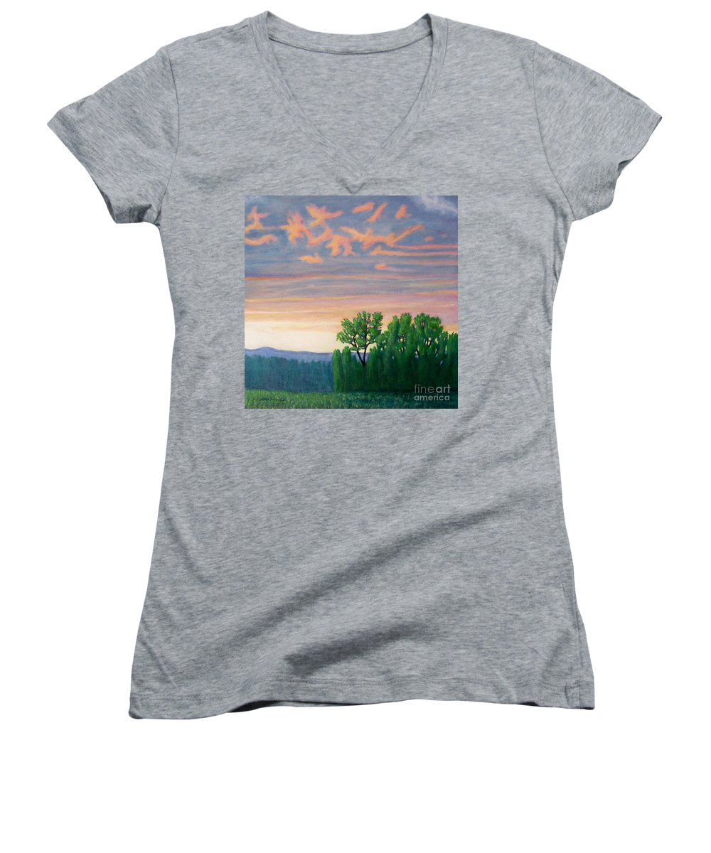 Landscape Women's V-Neck T-Shirt featuring the painting Balsa Road by Brian Commerford