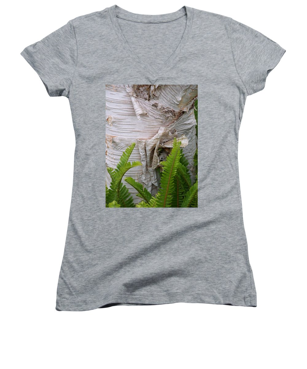 Tree Women's V-Neck (Athletic Fit) featuring the photograph Birch Fern by Gale Cochran-Smith