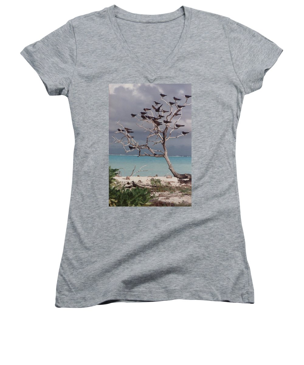 Charity Women's V-Neck T-Shirt featuring the photograph Black Birds by Mary-Lee Sanders