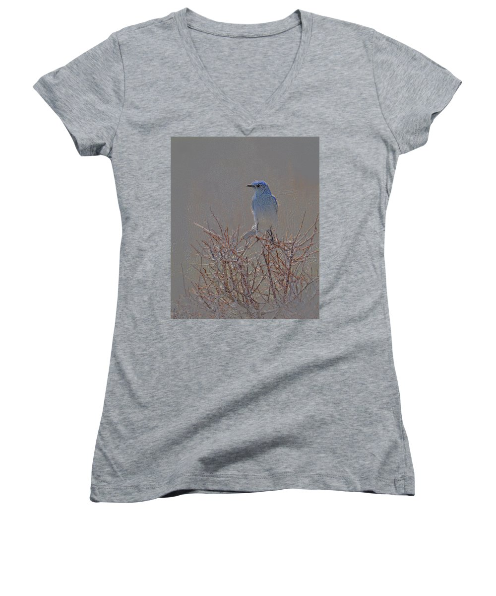 Colored Pencil Women's V-Neck (Athletic Fit) featuring the photograph Blue Bird Colored Pencil by Heather Coen