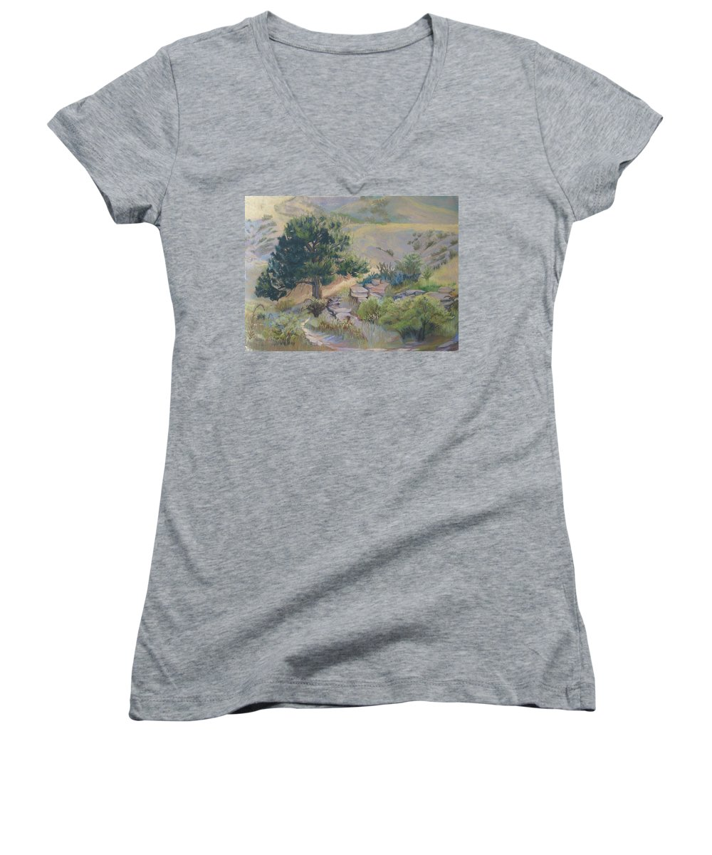 Pine Tree Women's V-Neck T-Shirt featuring the painting Buckhorn Canyon by Heather Coen