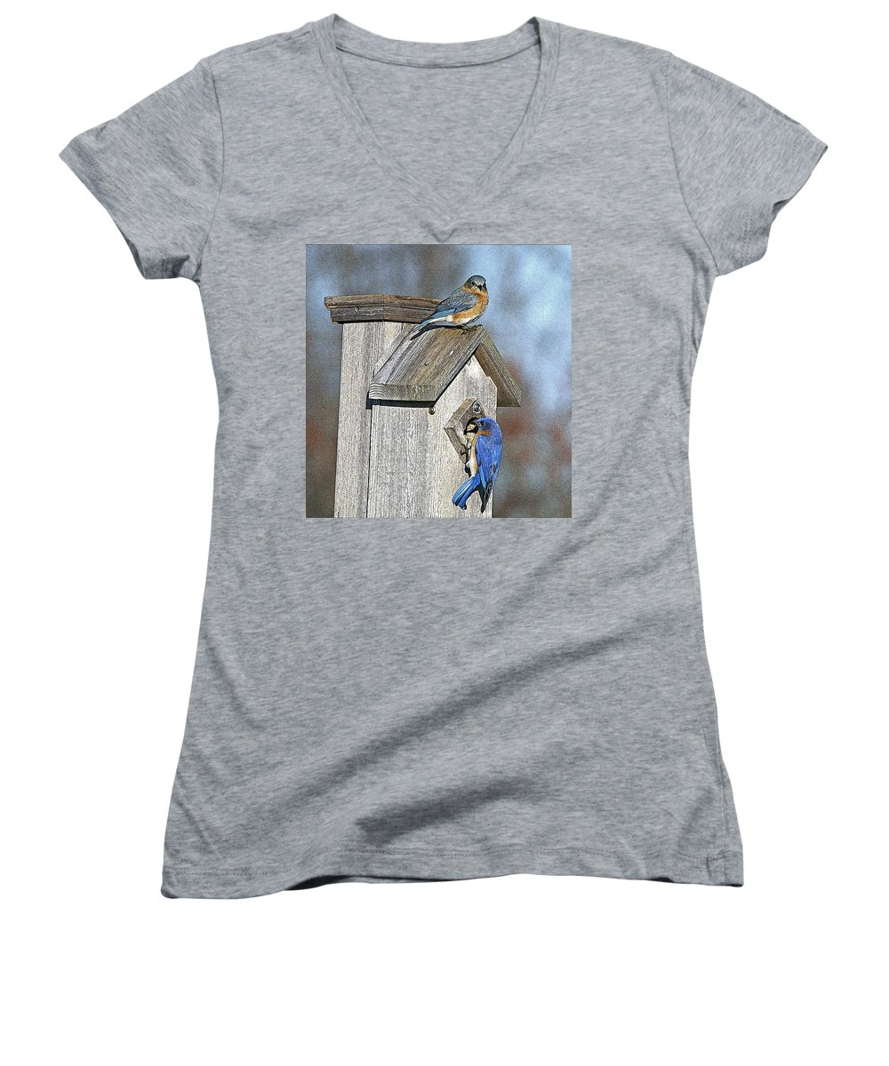 Nature Women's V-Neck T-Shirt featuring the photograph Cleaning House by Robert Pearson