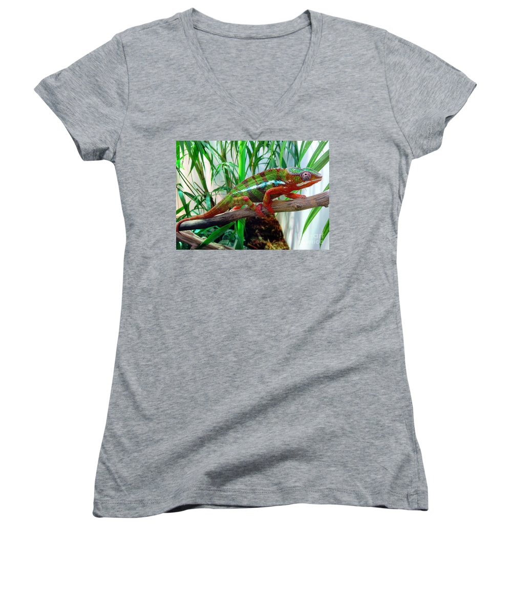 Chameleon Women's V-Neck T-Shirt featuring the photograph Colorful Chameleon by Nancy Mueller