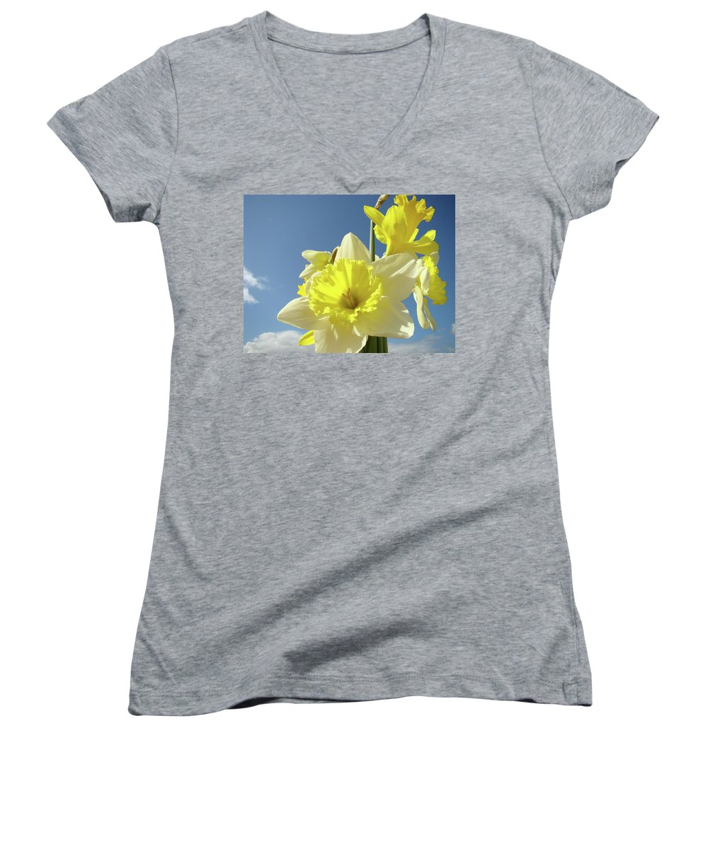 �daffodils Artwork� Women's V-Neck T-Shirt featuring the photograph Daffodil Flowers Artwork Floral Photography Spring Flower Art Prints by Baslee Troutman