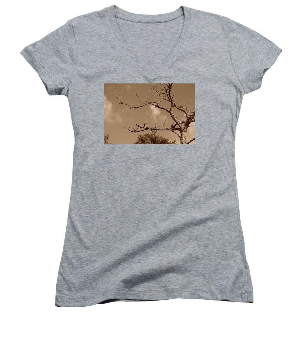 Sepia Women's V-Neck (Athletic Fit) featuring the photograph Dead Wood by Rob Hans