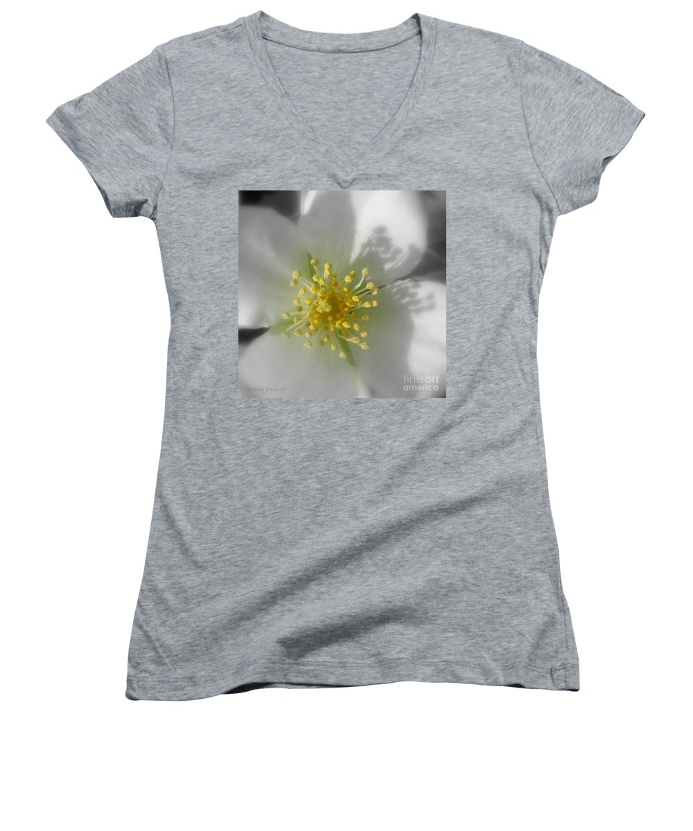 Photography Women's V-Neck T-Shirt featuring the photograph Dogwood by Shelley Jones