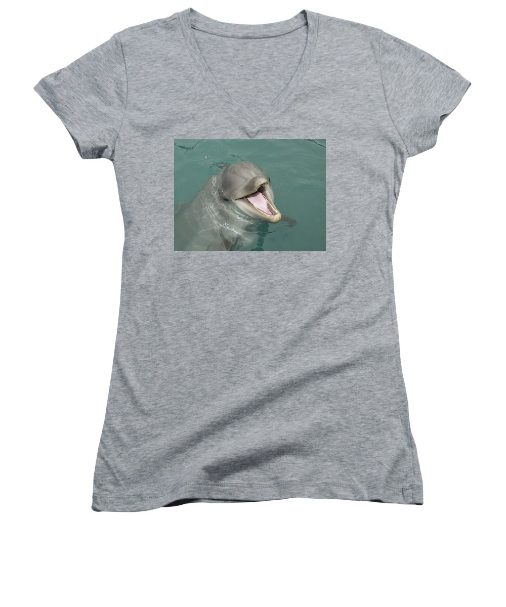Dolphin Women's V-Neck (Athletic Fit) featuring the painting Dolphin by Sean M