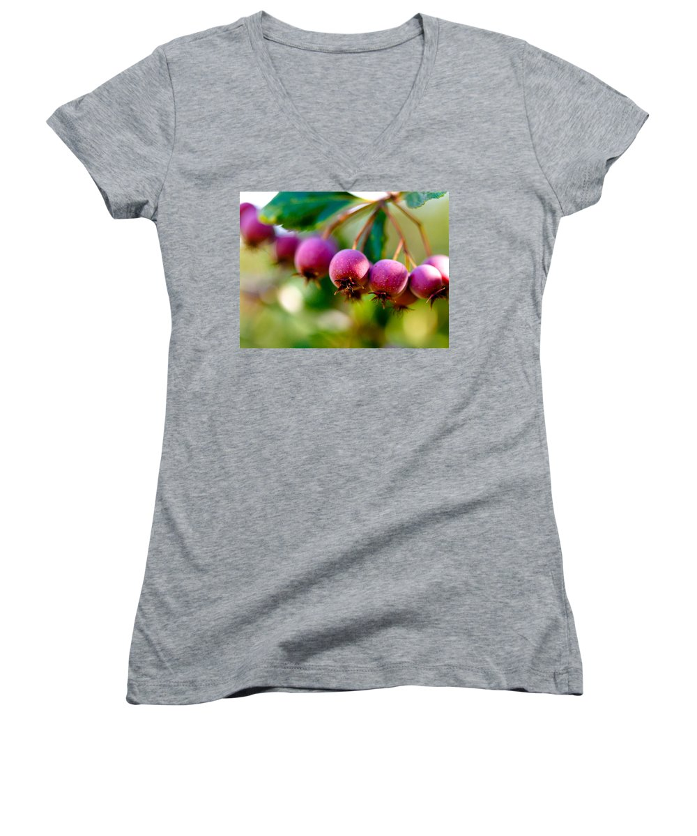 Berry Women's V-Neck T-Shirt featuring the photograph Fall Berries by Marilyn Hunt