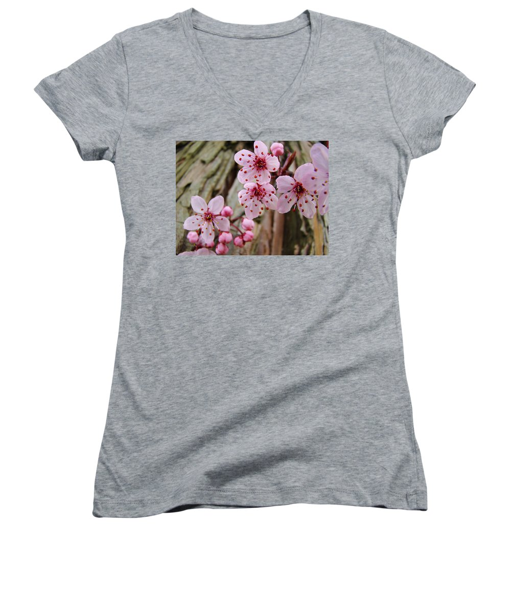 Tree Women's V-Neck T-Shirt featuring the photograph Flower Blossoms Pink Tree Blossoms Art Print Giclee Spring Flowers by Baslee Troutman
