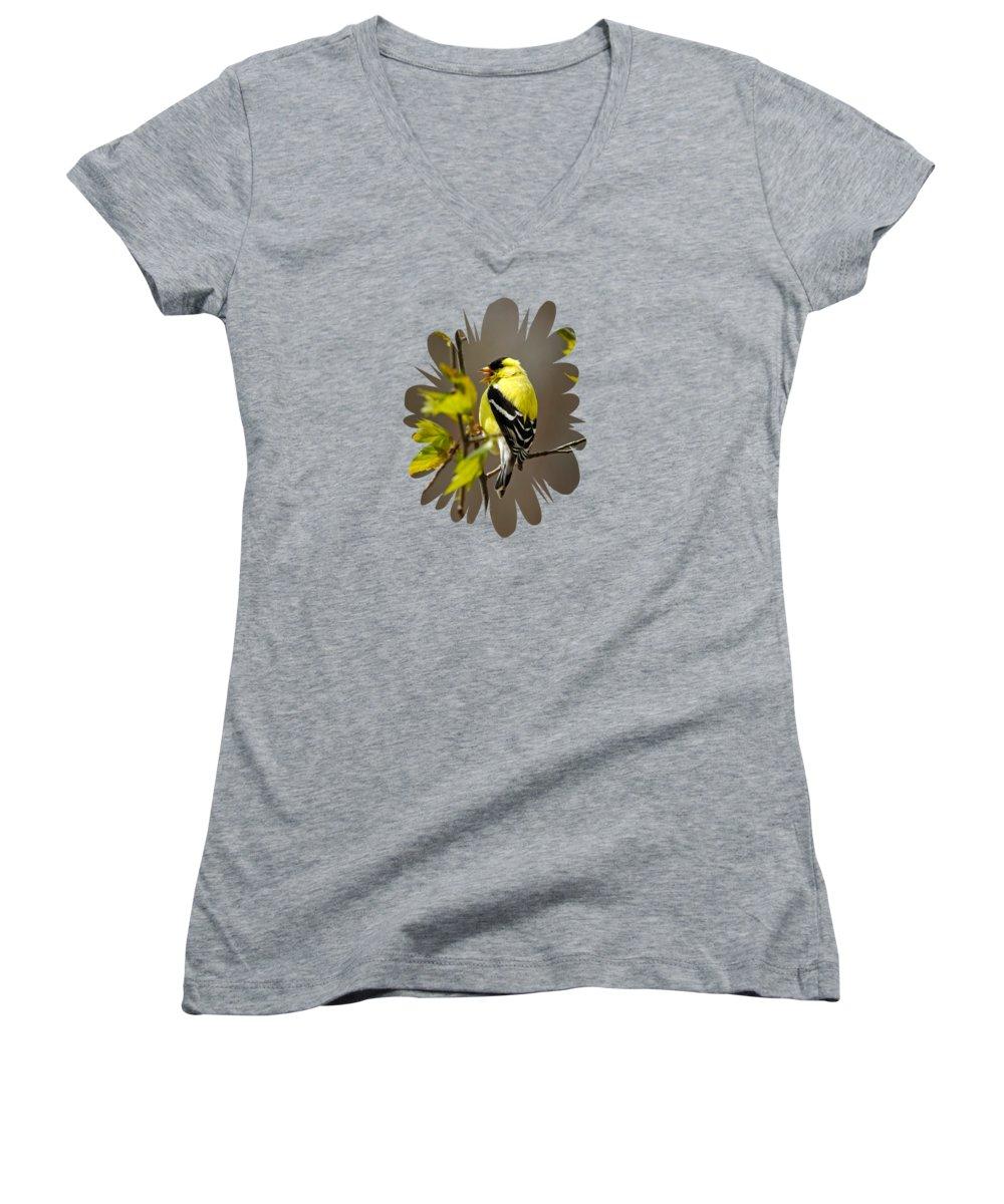 Canary Women's V-Neck T-Shirts