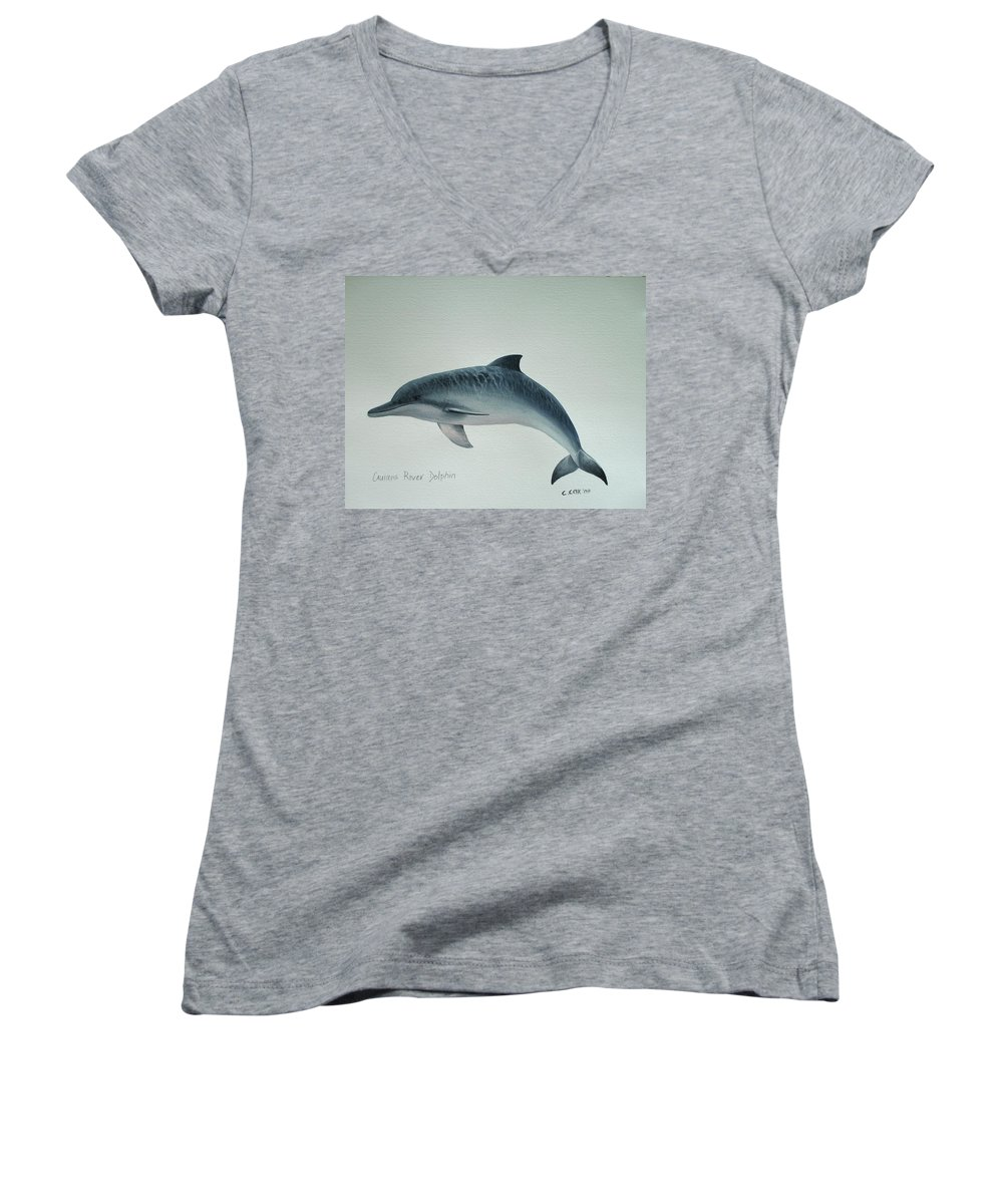 River Dolphin Women's V-Neck T-Shirt featuring the painting Guiana River Dolphin by Christopher Cox