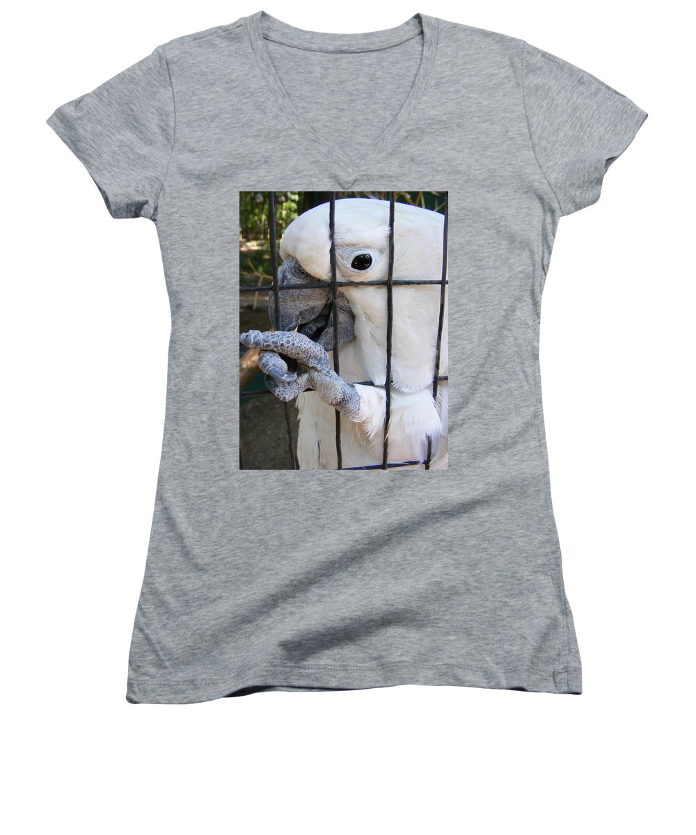Bird Women's V-Neck (Athletic Fit) featuring the photograph Hand Me The Key Please by Ed Smith