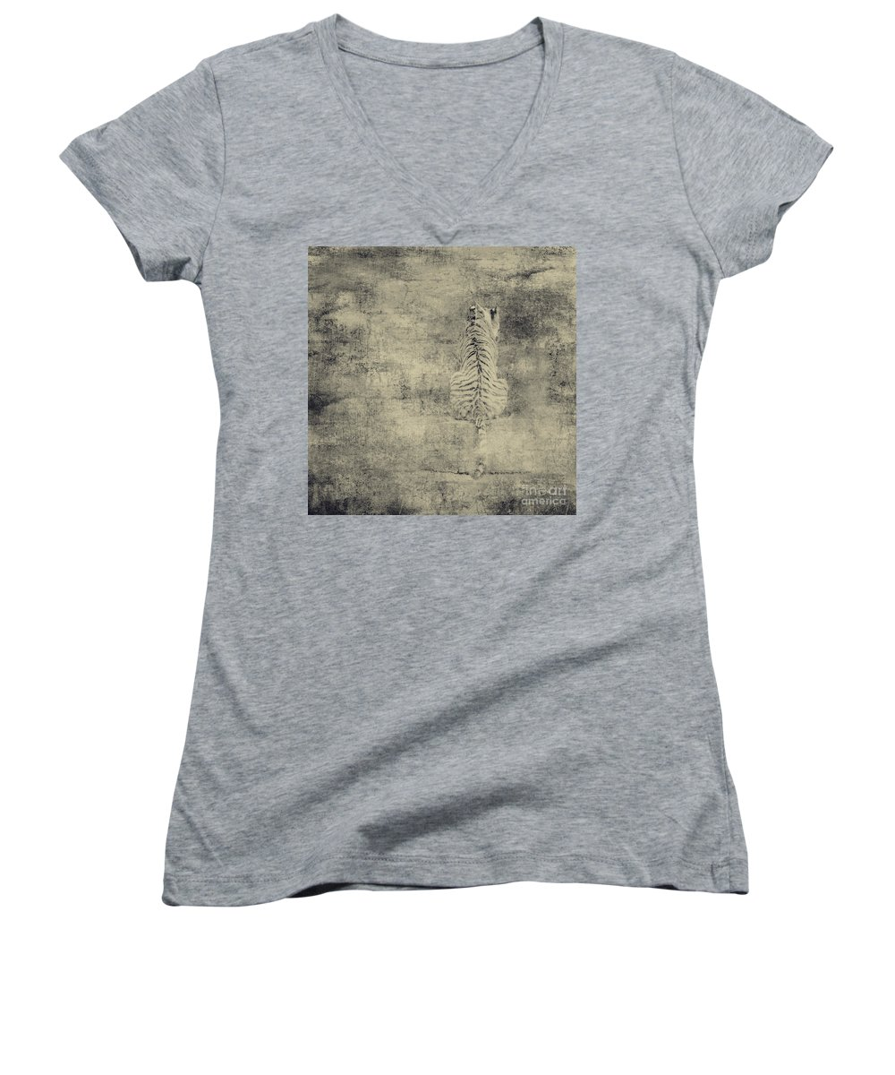 Dipasquale Women's V-Neck (Athletic Fit) featuring the photograph Have You Comprehended... by Dana DiPasquale