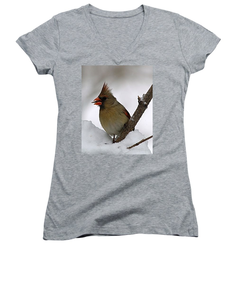Bird Women's V-Neck (Athletic Fit) featuring the photograph I Love Seeds by Gaby Swanson