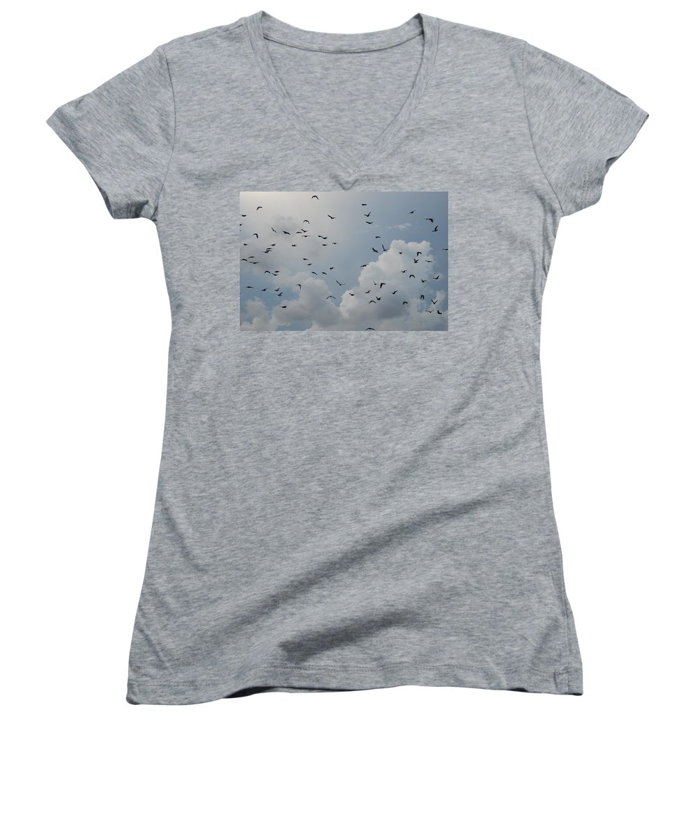 Birds Women's V-Neck T-Shirt featuring the photograph In Flight by Rob Hans