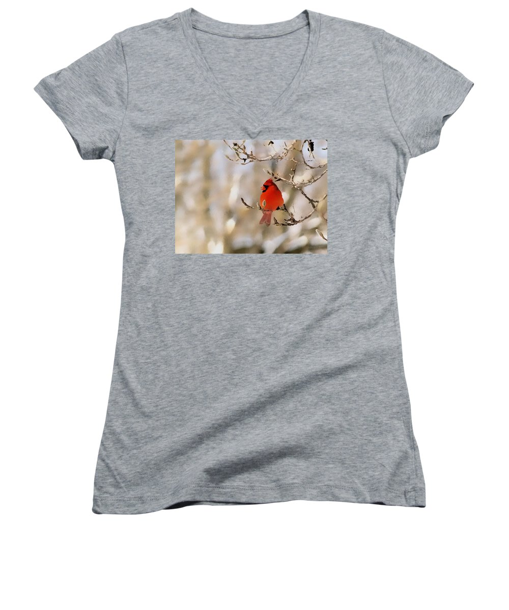 Cardinal Women's V-Neck T-Shirt featuring the photograph In Red by Gaby Swanson