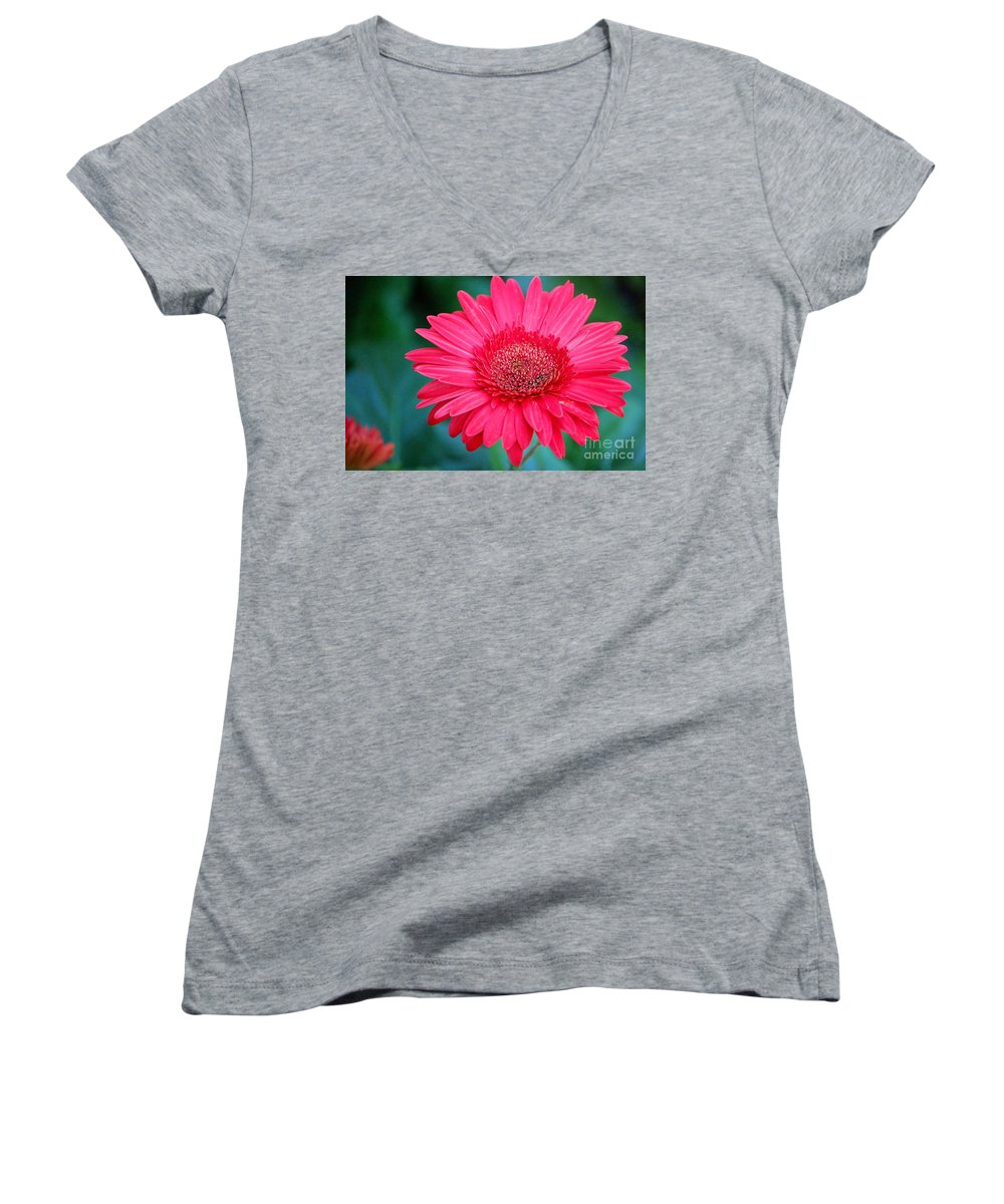 Gerber Daisy Women's V-Neck (Athletic Fit) featuring the photograph In The Pink by Debbi Granruth