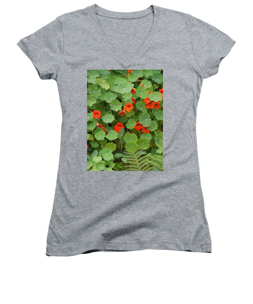 Nasturtiums Women's V-Neck T-Shirt featuring the photograph Nasturtiums by Gale Cochran-Smith