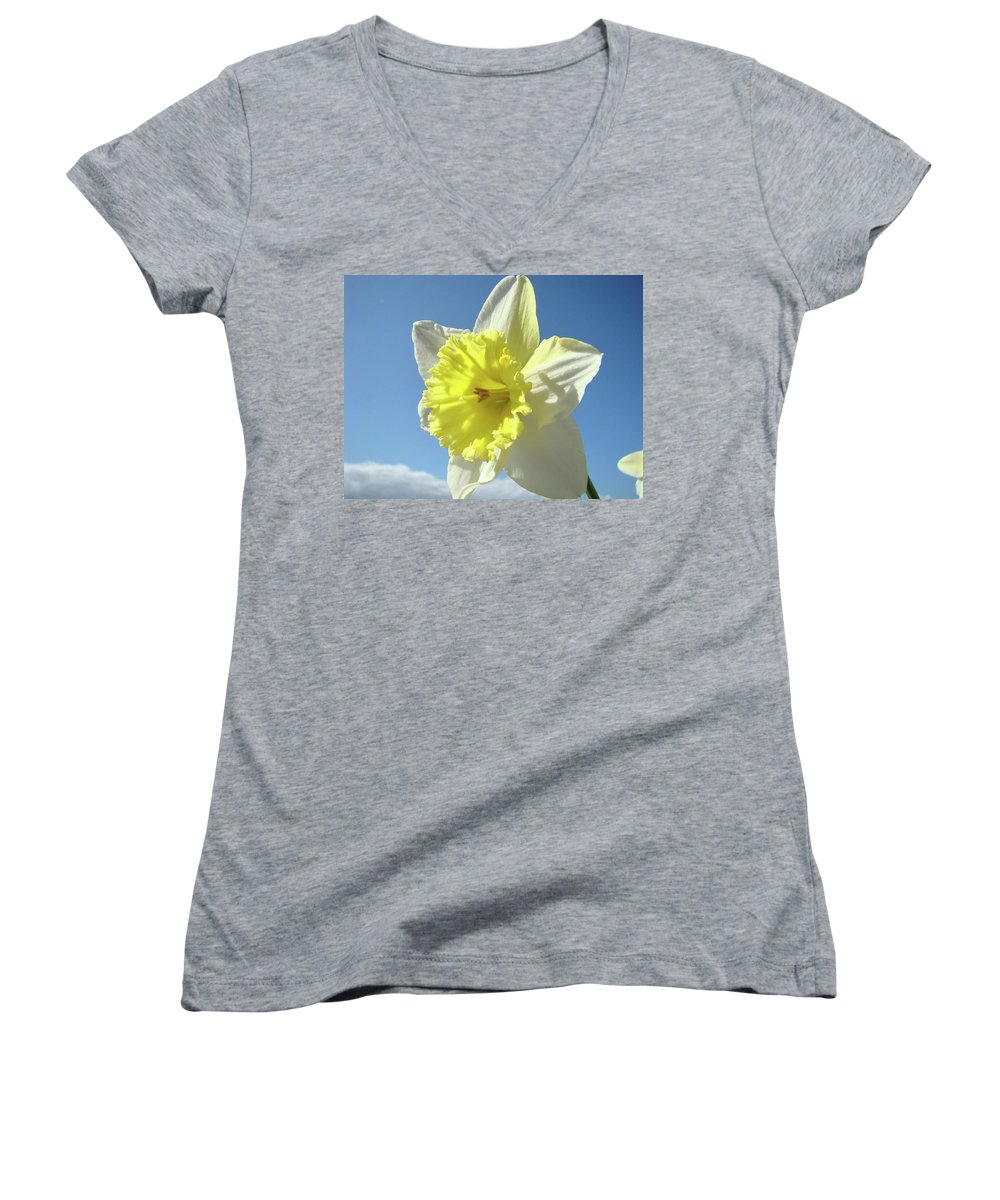 �daffodils Artwork� Women's V-Neck T-Shirt featuring the photograph Nature Daffodil Flowers Art Prints Spring Nature Art by Baslee Troutman