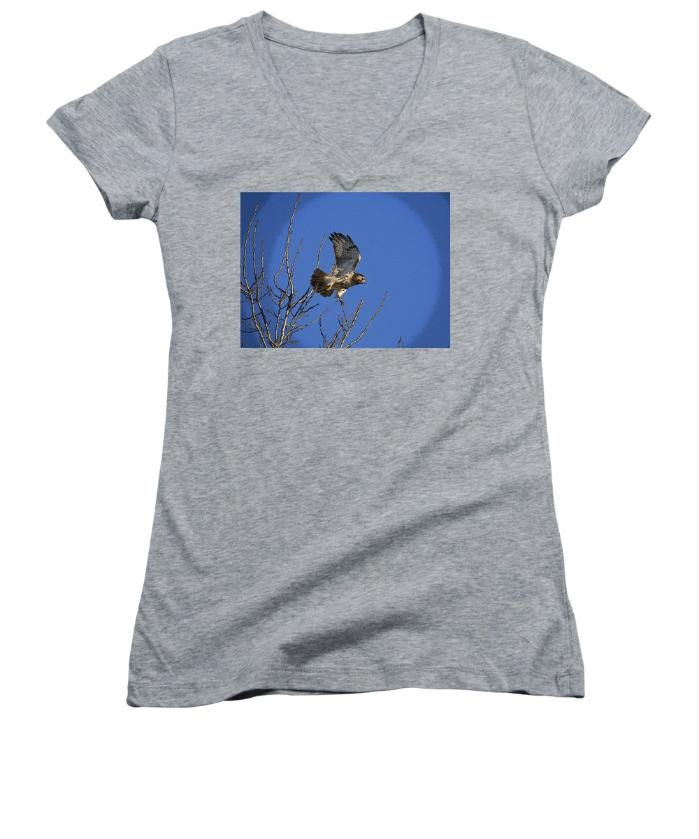 Hawk Women's V-Neck T-Shirt featuring the photograph On The Move by Robert Pearson