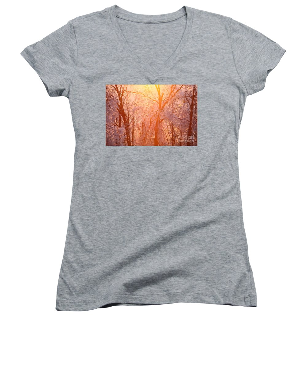 Pink Women's V-Neck T-Shirt featuring the photograph Pink And Gold by Nadine Rippelmeyer