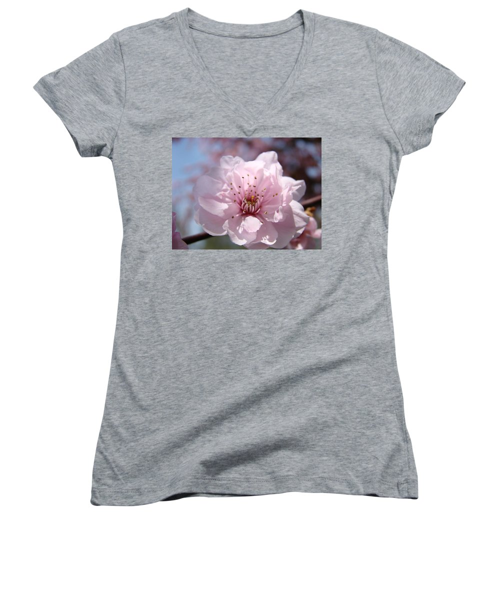 �blossoms Artwork� Women's V-Neck (Athletic Fit) featuring the photograph Pink Blossom Nature Art Prints 34 Tree Blossoms Spring Nature Art by Baslee Troutman