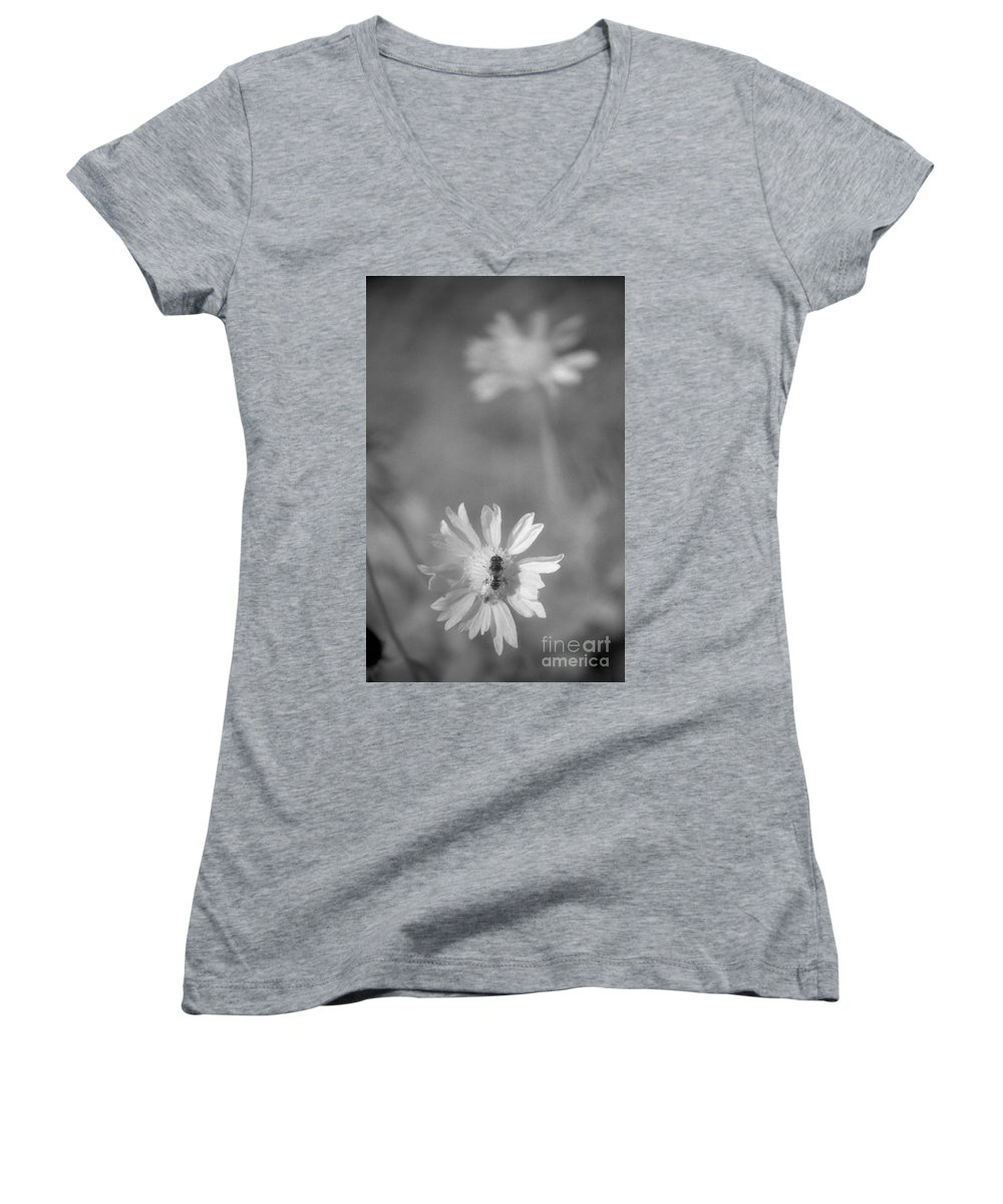 Pollinate Women's V-Neck T-Shirt featuring the photograph Pollination by Richard Rizzo