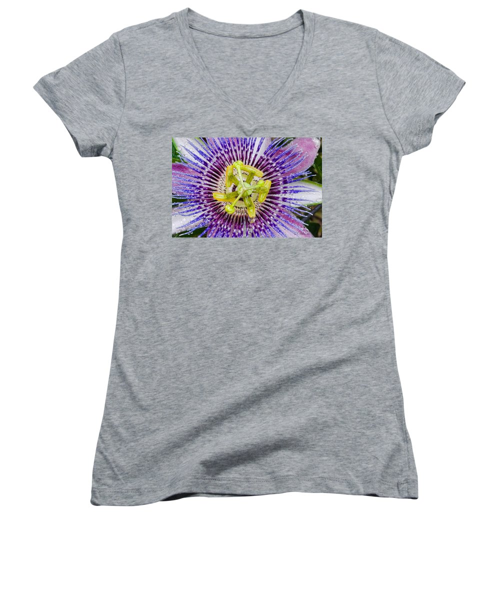 Passion Women's V-Neck (Athletic Fit) featuring the photograph Purple Radial by Christopher Holmes