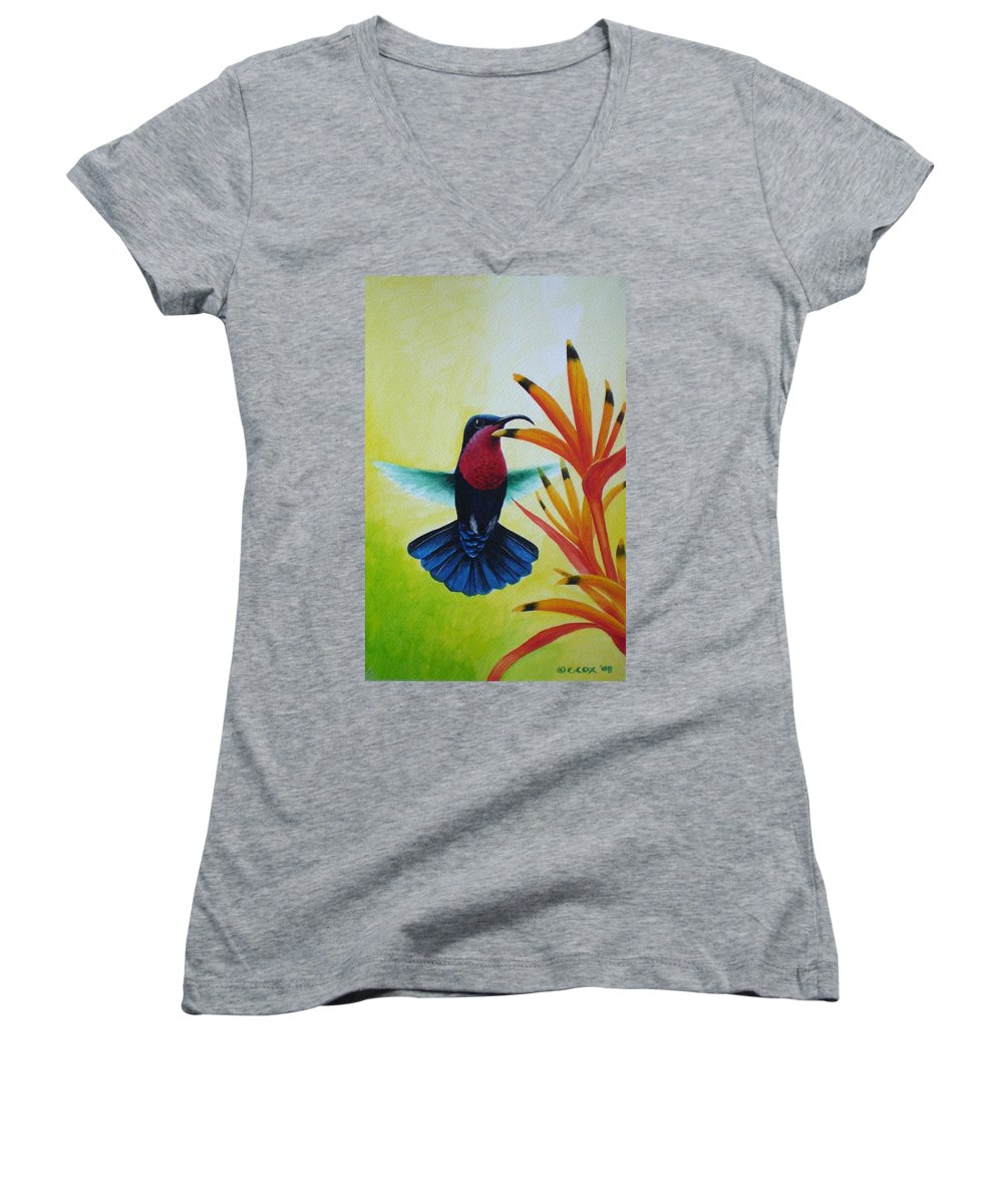 Purple-throated Carib Women's V-Neck T-Shirt featuring the painting Purple-throated Carib And Bird Of Paradise by Christopher Cox