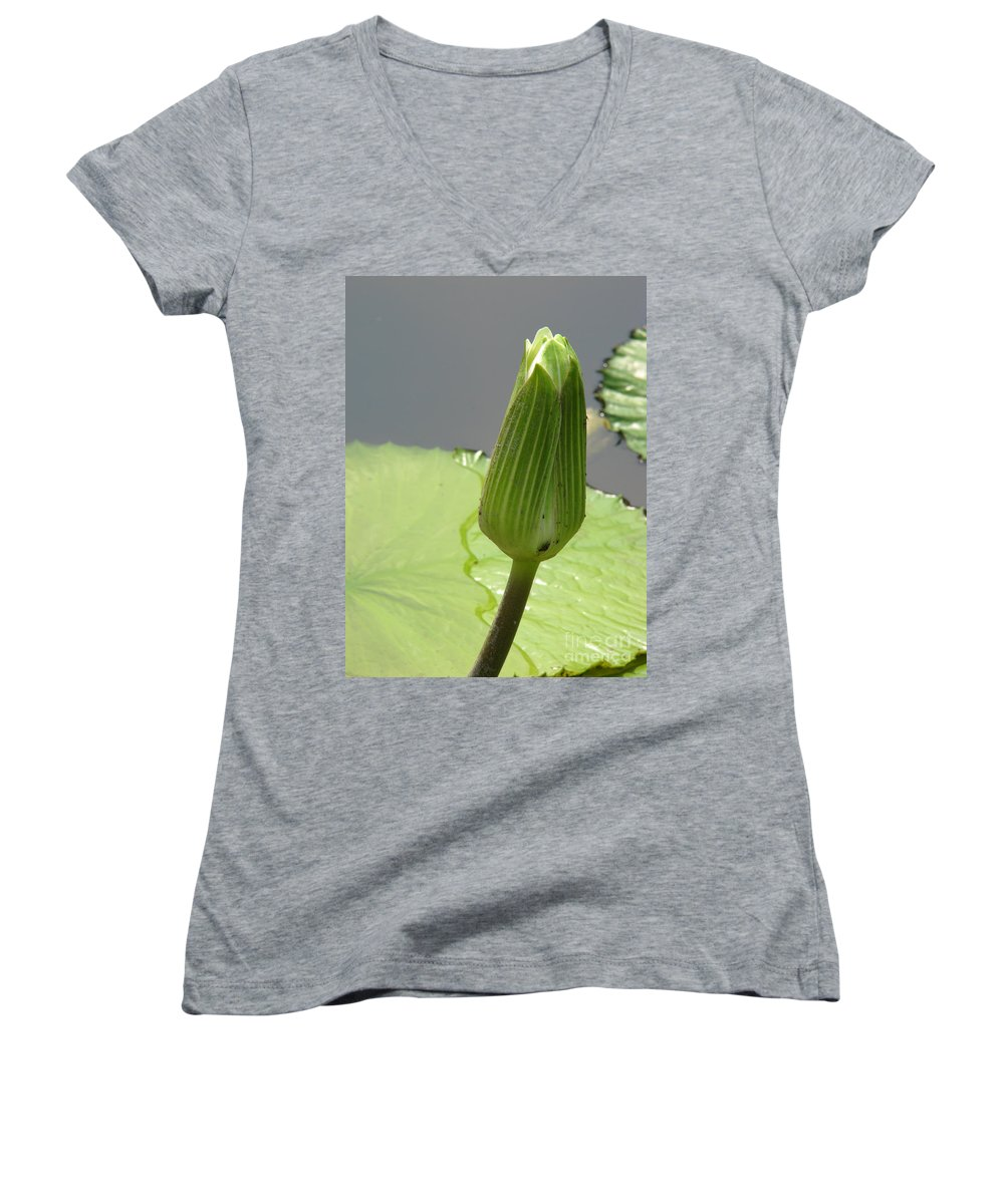 Lilly Women's V-Neck T-Shirt featuring the photograph Ready To Bloom by Amanda Barcon