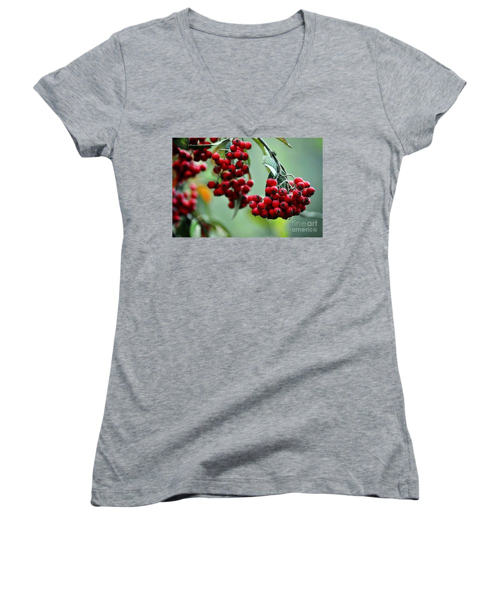 Clay Women's V-Neck (Athletic Fit) featuring the photograph Red Berries by Clayton Bruster