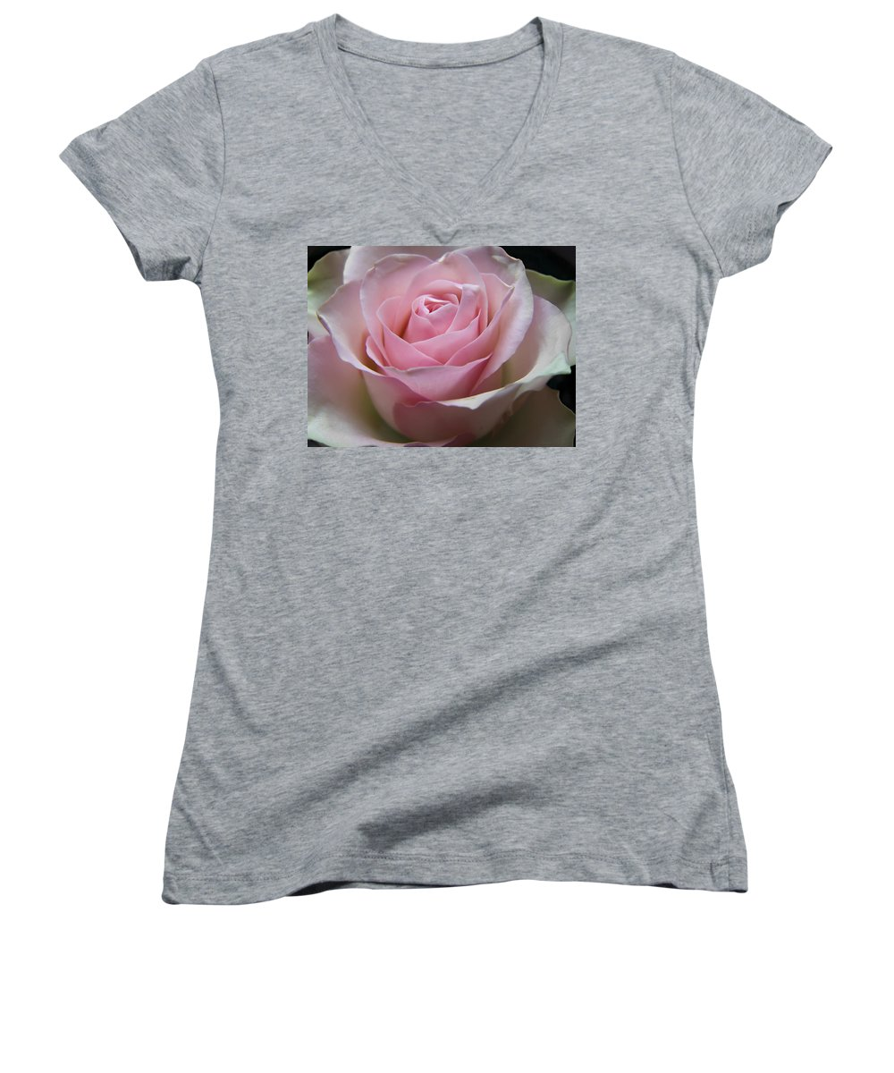 Rose Women's V-Neck T-Shirt featuring the photograph Rose by Daniel Csoka