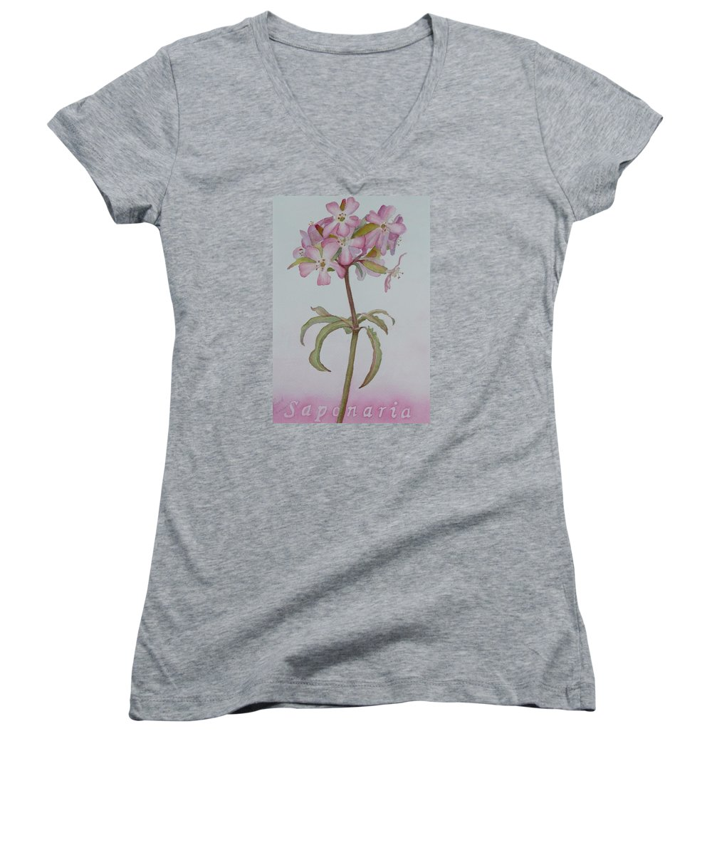 Flower Women's V-Neck T-Shirt featuring the painting Saponaria by Ruth Kamenev