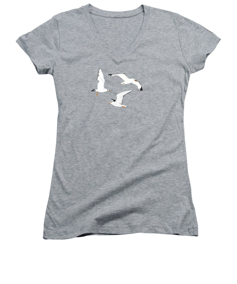 Seagulls Women's V-Neck featuring the digital art Seagulls Gathering at the Cricket by Elizabeth Tuck