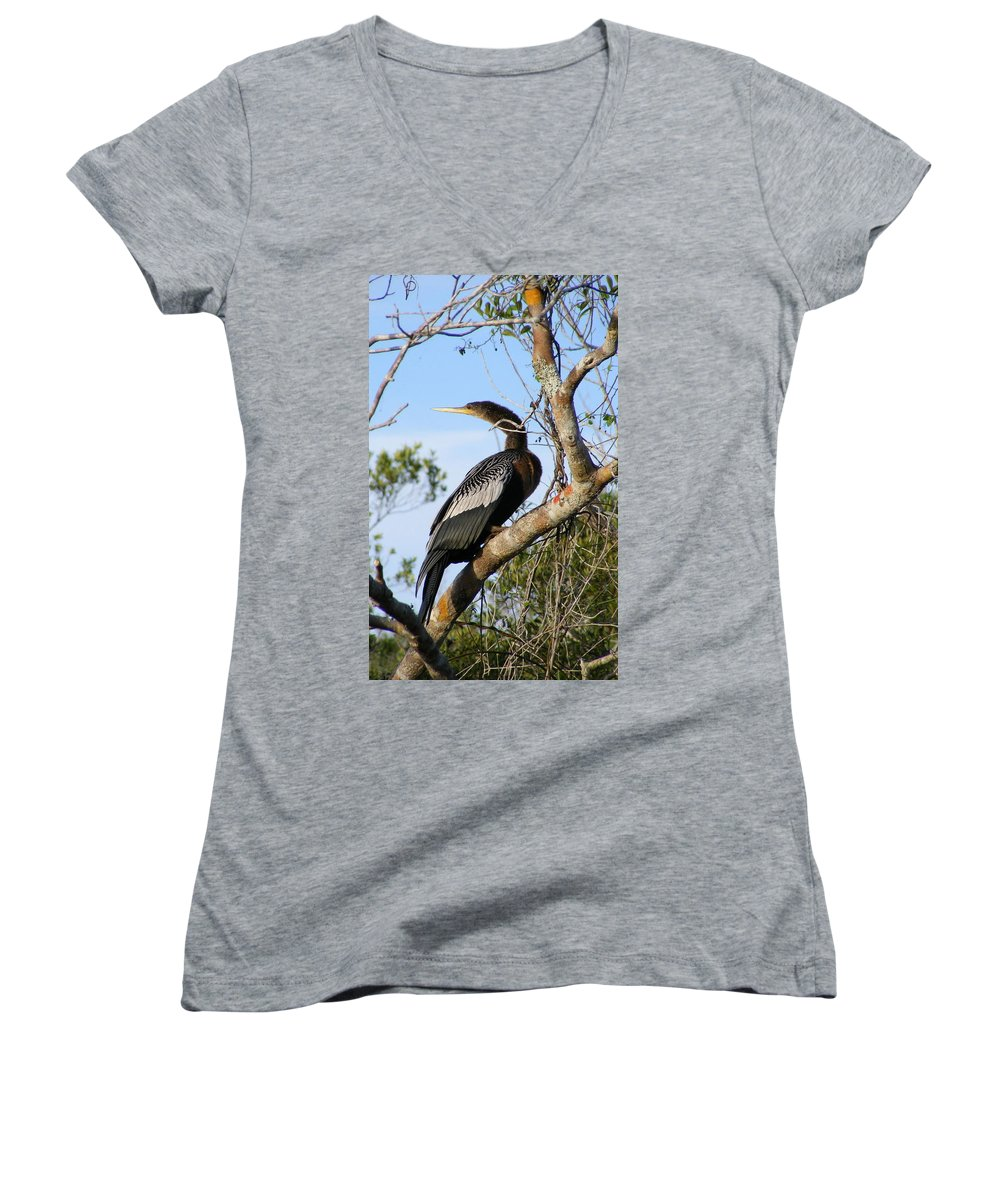 Bird Women's V-Neck (Athletic Fit) featuring the photograph Strike A Pose by Ed Smith