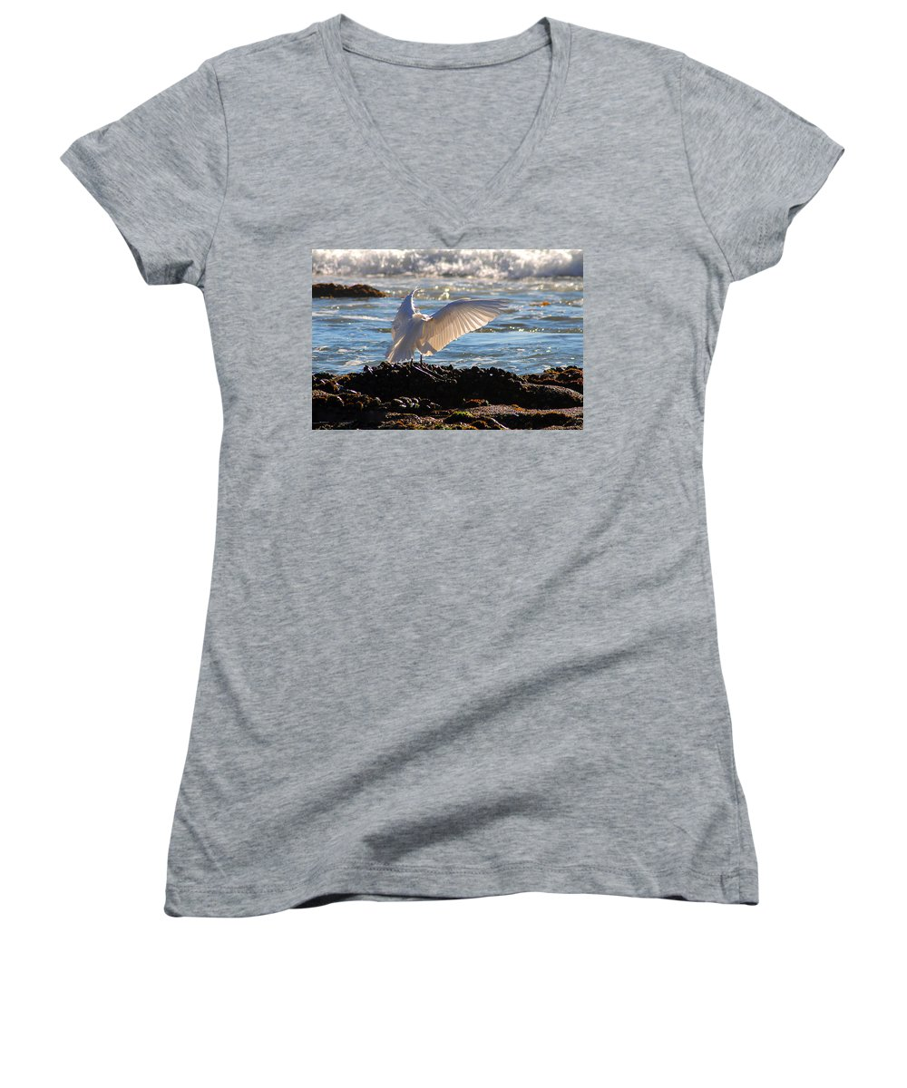 Clay Women's V-Neck T-Shirt featuring the photograph Strut by Clayton Bruster