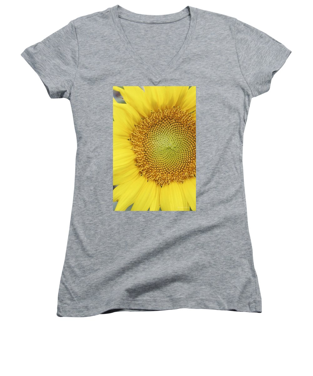 Sunflower Women's V-Neck T-Shirt featuring the photograph Sunflower by Margie Wildblood
