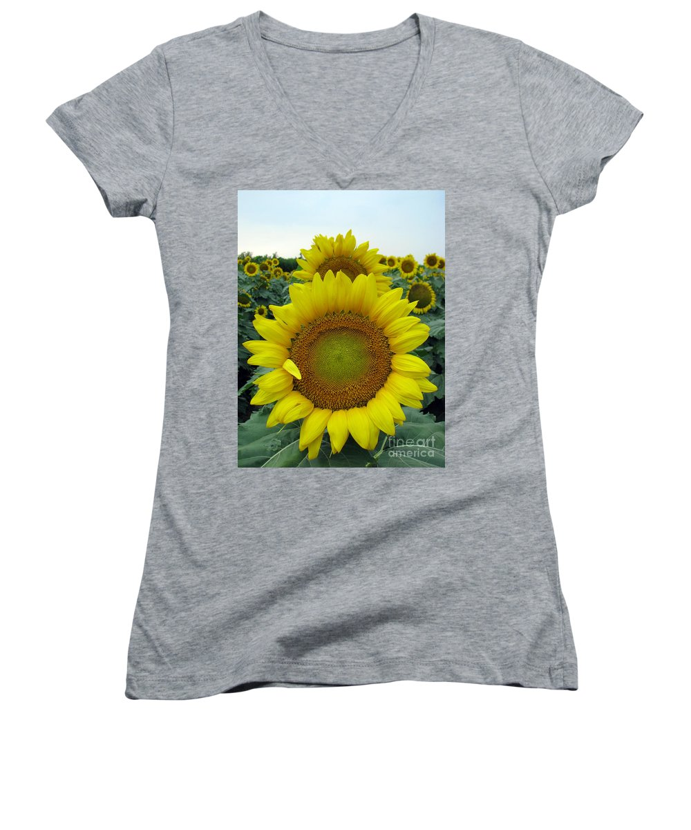 Sunflowers Women's V-Neck (Athletic Fit) featuring the photograph Sunflowers by Amanda Barcon