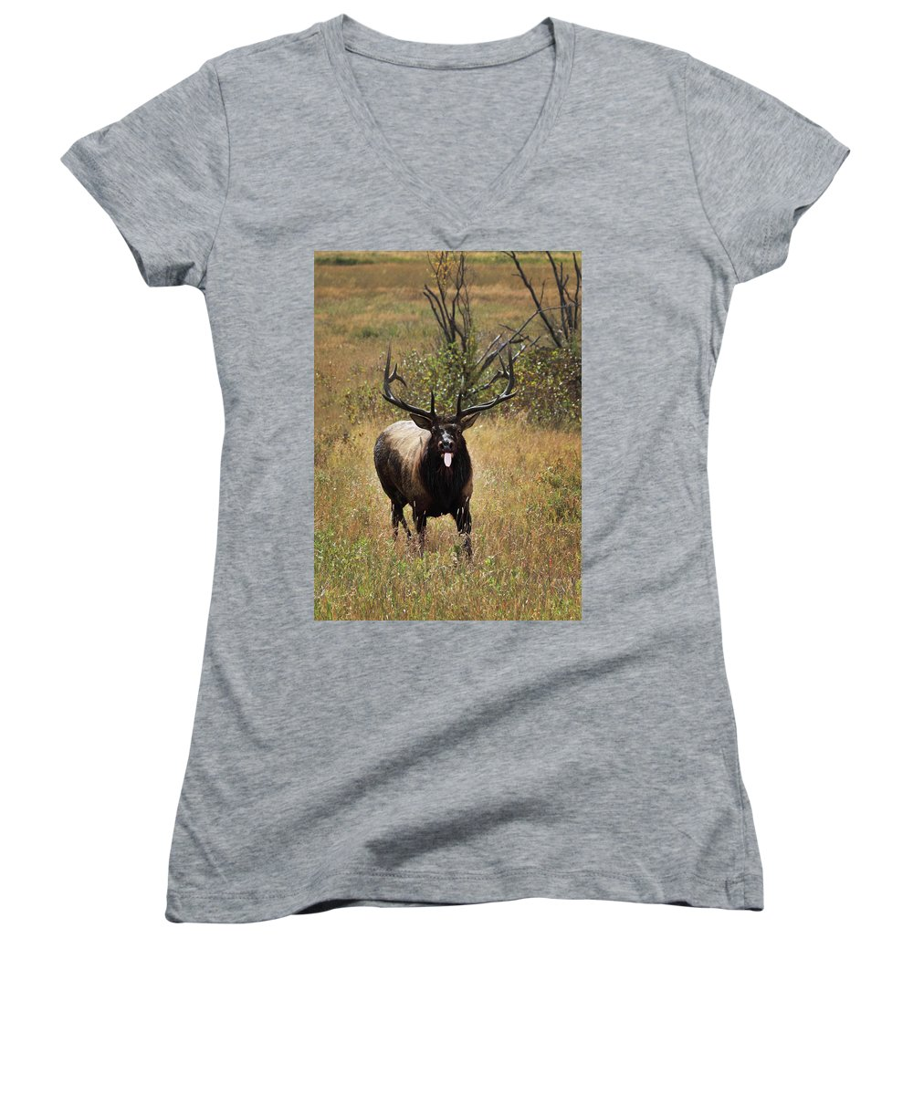 Tongue Women's V-Neck (Athletic Fit) featuring the photograph That Moment When by Shane Bechler
