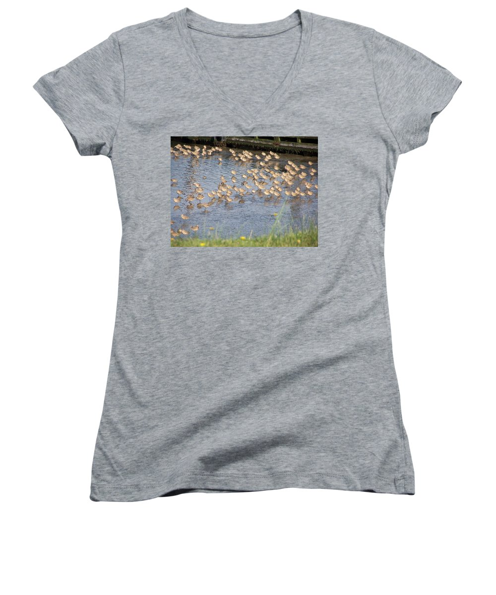 Seabirds Women's V-Neck (Athletic Fit) featuring the photograph The Plovers by Laurie Kidd