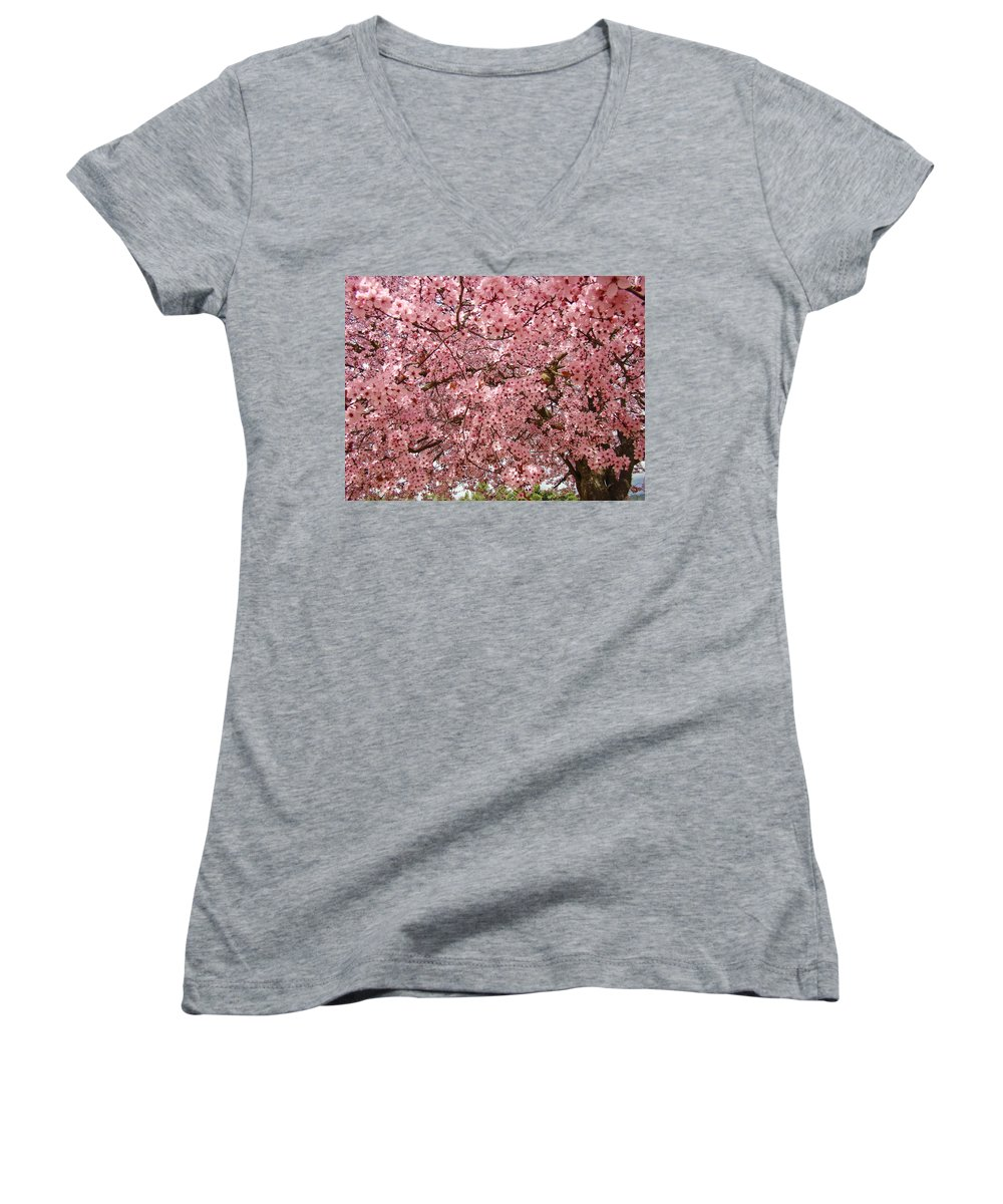 Tree Women's V-Neck (Athletic Fit) featuring the photograph Tree Blossoms Pink Blossoms Art Prints Giclee Flower Landscape Artwork by Baslee Troutman