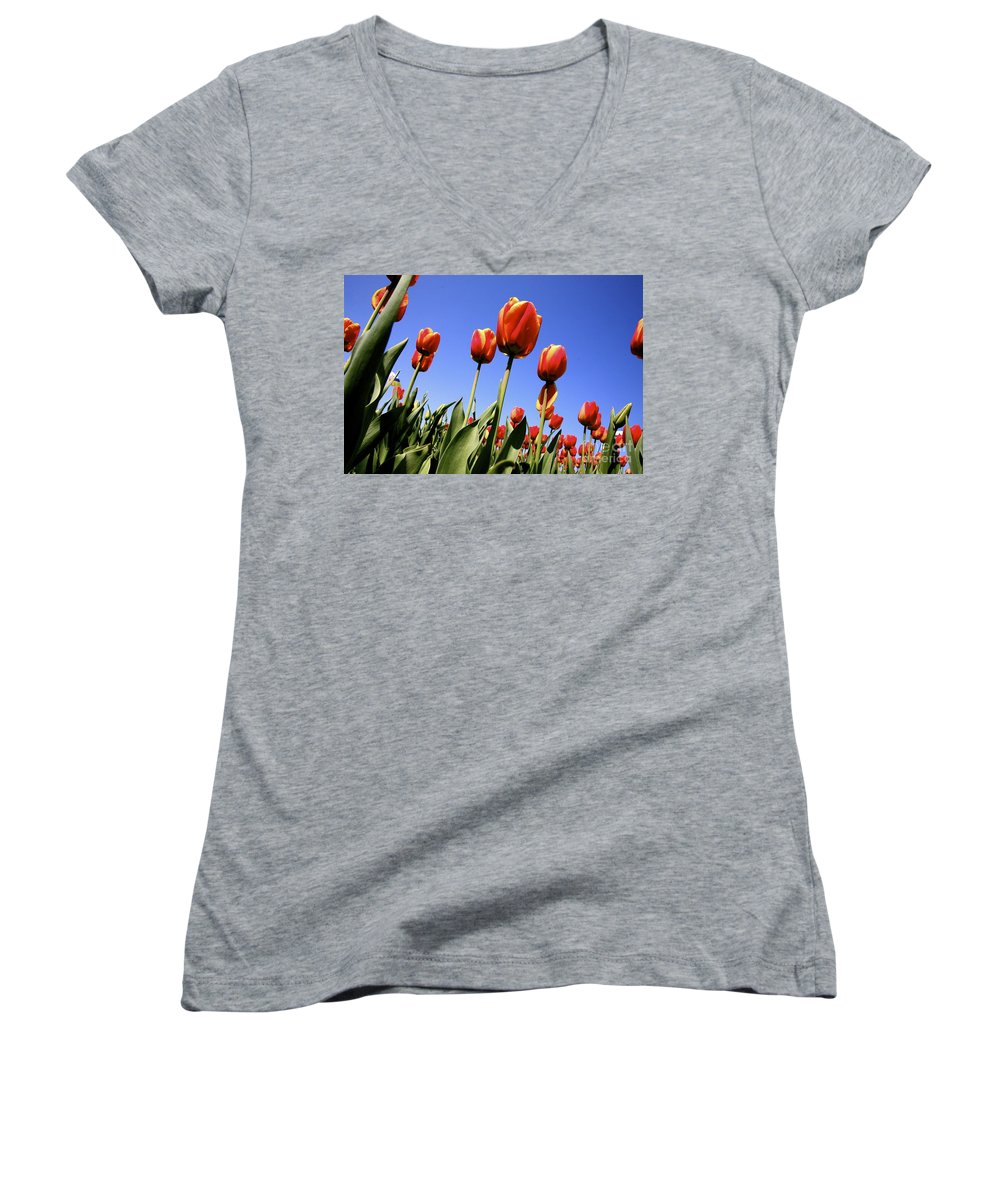 Tulips Women's V-Neck T-Shirt featuring the photograph Tulips Time 3 by Robert Pearson