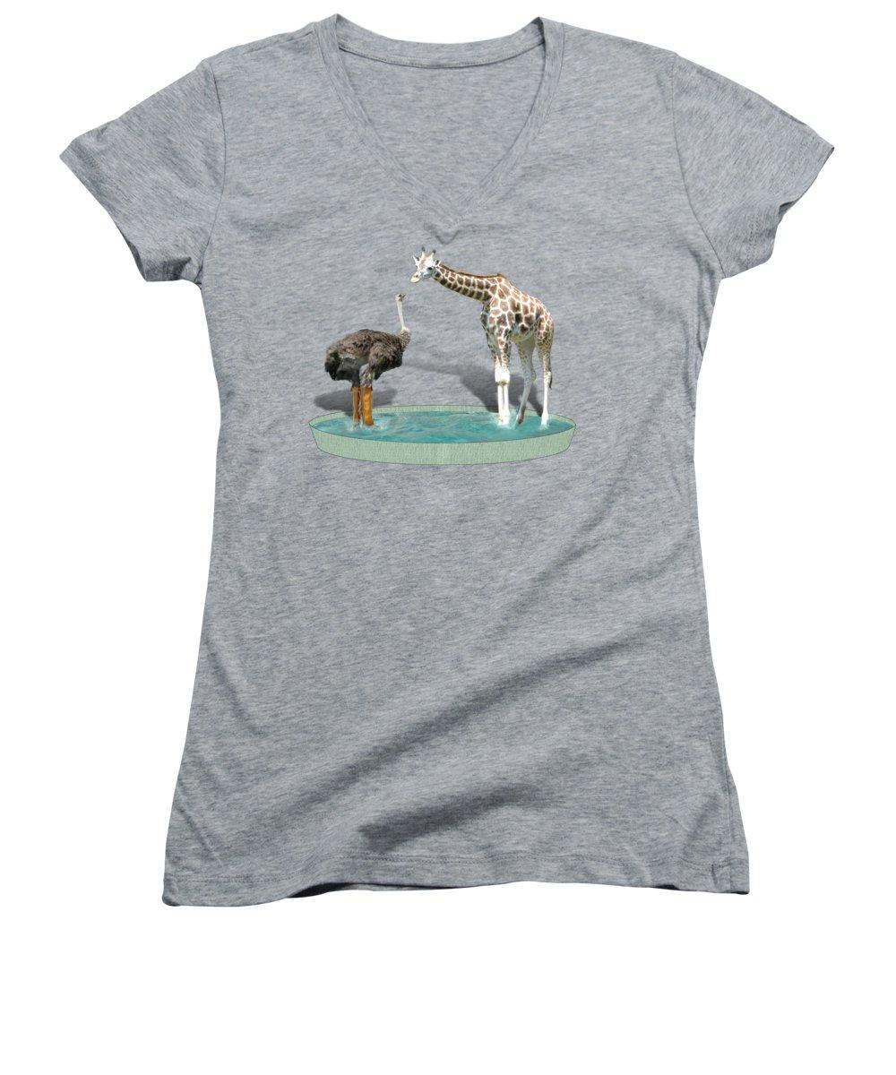 Ostrich Women's V-Neck T-Shirts