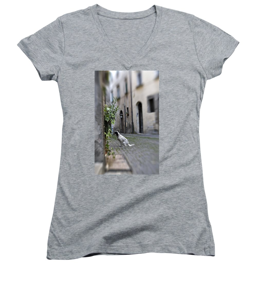 Dog Women's V-Neck (Athletic Fit) featuring the photograph Waiting by Marilyn Hunt