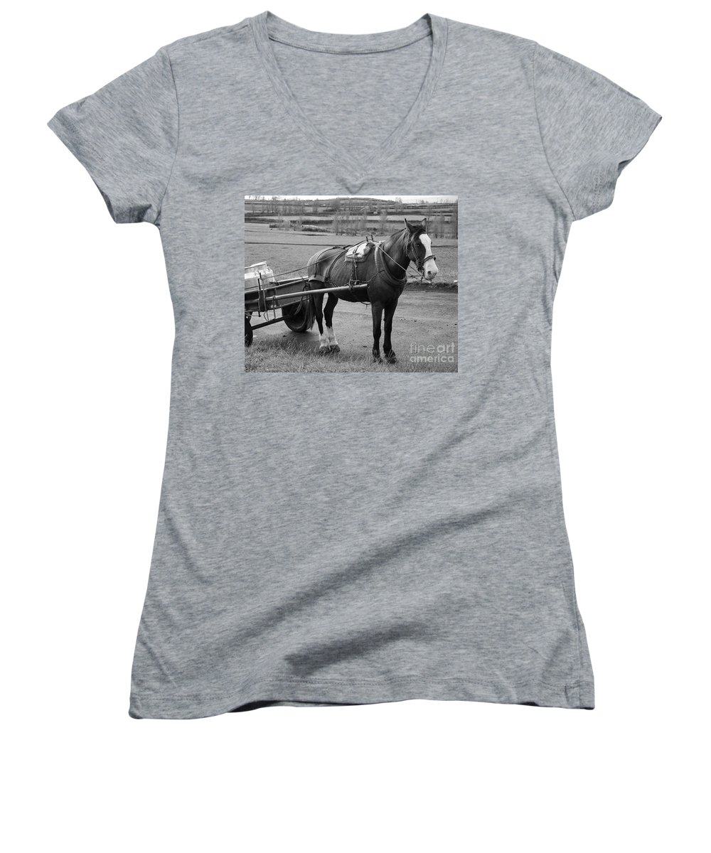 Cart Women's V-Neck (Athletic Fit) featuring the photograph Work Horse And Cart by Gaspar Avila